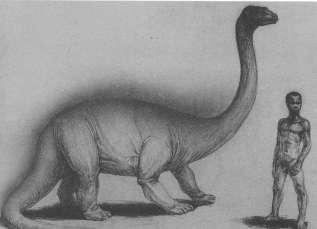 Космопоиск отправляется в Конго искать живого динозавра